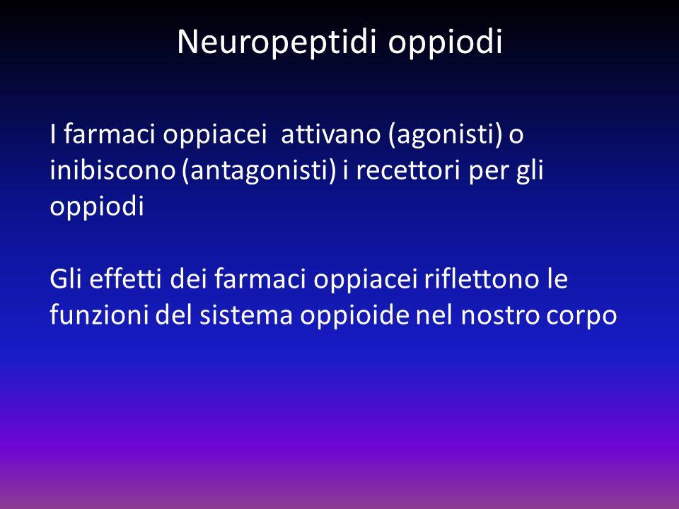 Neuropeptidi oppiodi I farmaci oppiacei attivano (agonisti) o inibiscono (antagonisti) i recettori per gli oppiodi.
