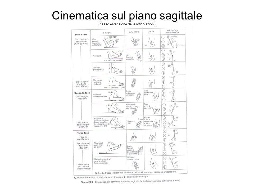 Cinematica sul piano sagittale (flesso estensione delle articolazioni)