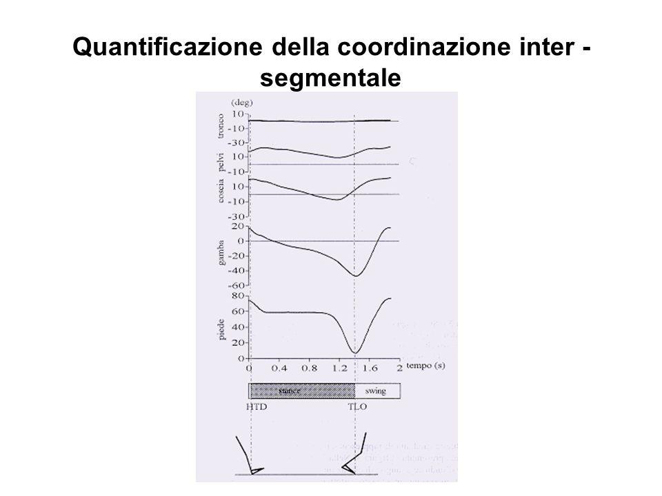 Quantificazione della coordinazione inter -segmentale