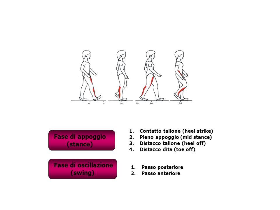 Fase di appoggio (stance) Fase di oscillazione (swing)