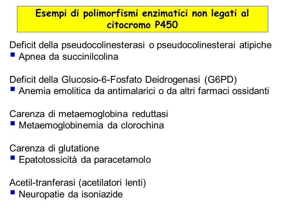 Esempi di polimorfismi enzimatici non legati al citocromo P450
