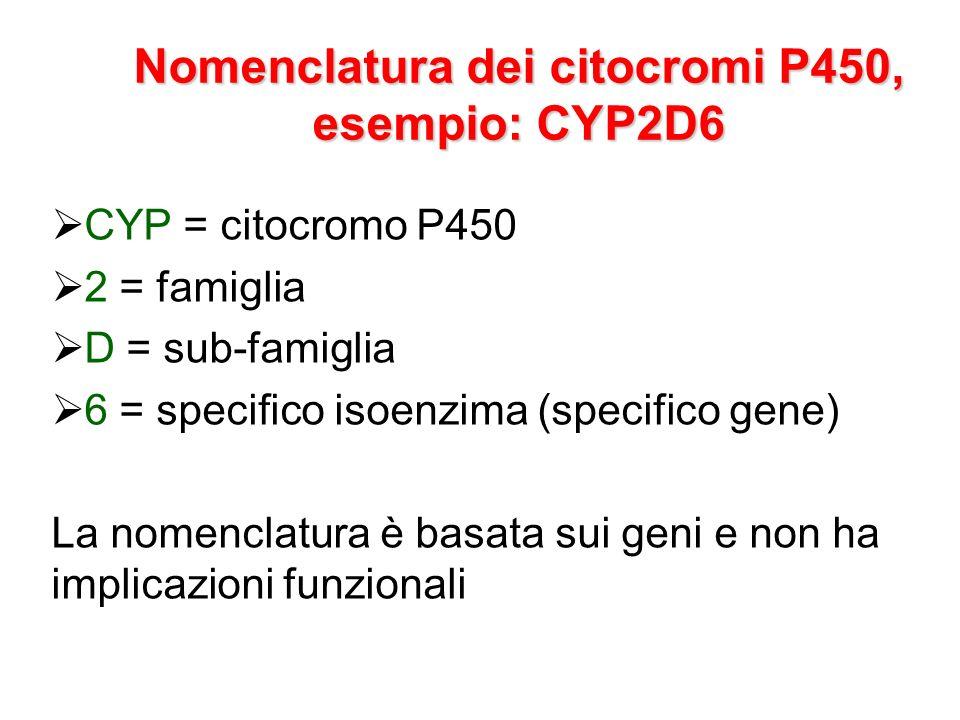 Nomenclatura dei citocromi P450, esempio: CYP2D6