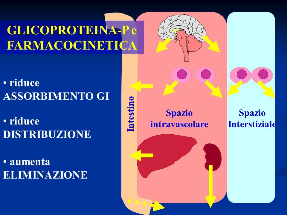 GLICOPROTEINA-P e FARMACOCINETICA Spazio intravascolare