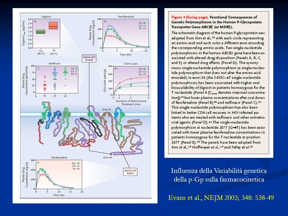 Influenza della Variabilità genetica della p-Gp sulla farmacocinetica