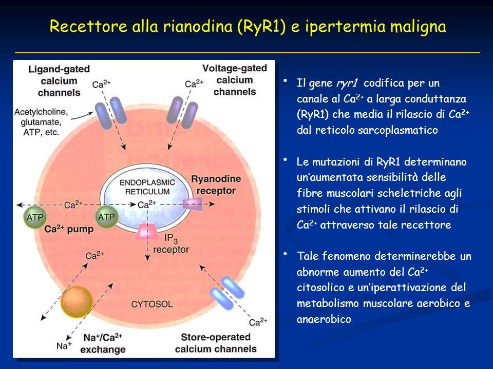 Recettore alla rianodina (RyR1) e ipertermia maligna