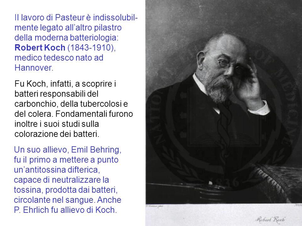 Il lavoro di Pasteur è indissolubil-mente legato all'altro pilastro della moderna batteriologia: Robert Koch (1843-1910), medico tedesco nato ad Hannover.