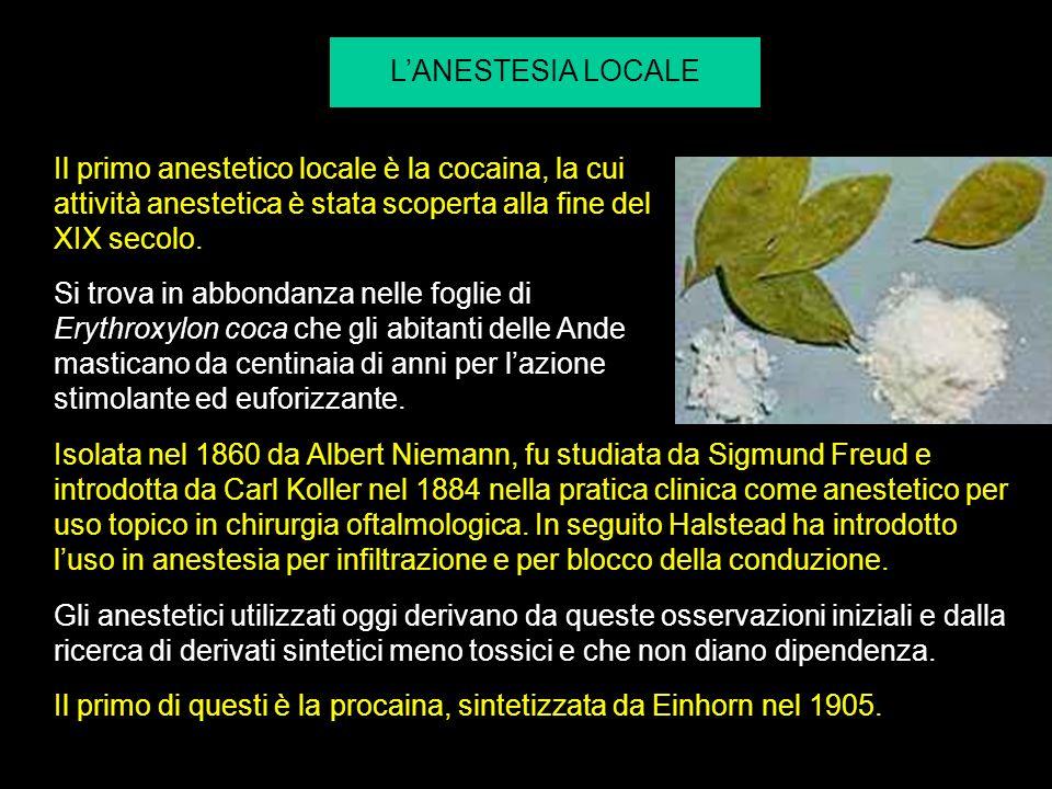 L'ANESTESIA LOCALE Il primo anestetico locale è la cocaina, la cui attività anestetica è stata scoperta alla fine del XIX secolo.