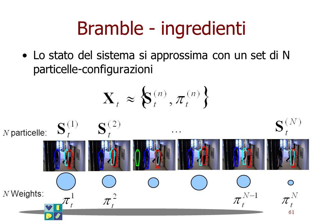 Bramble - ingredientiLo stato del sistema si approssima con un set di N particelle-configurazioni. N particelle: