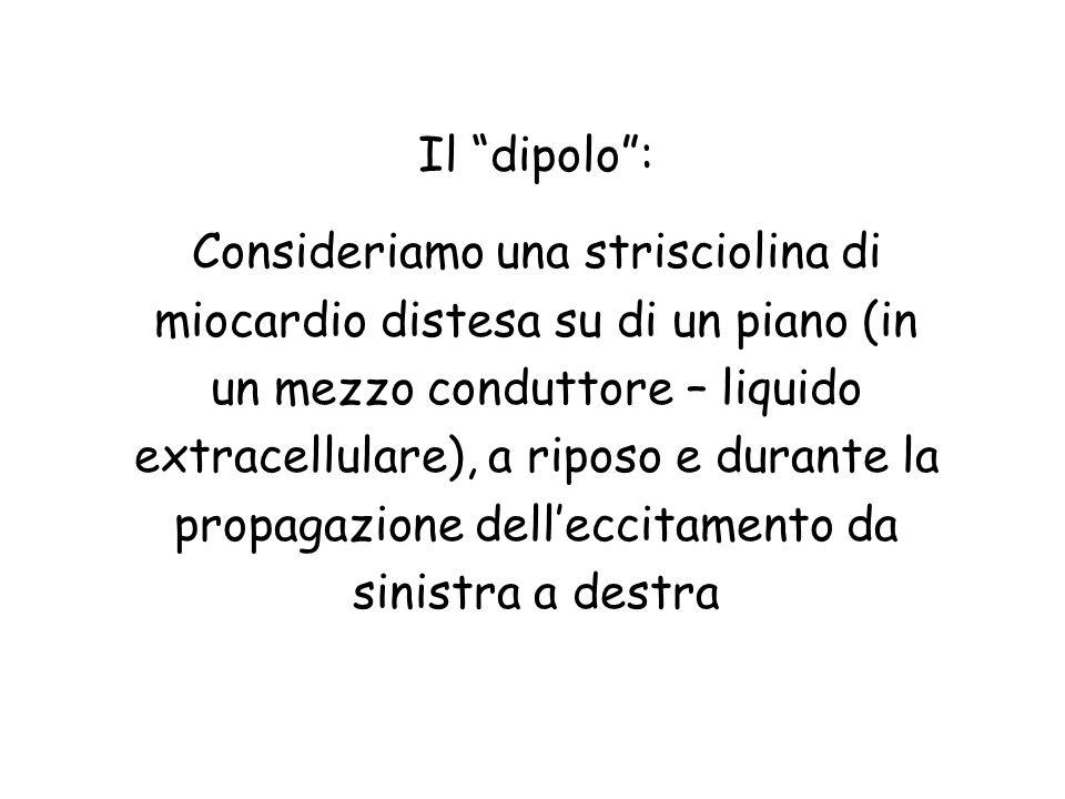 Il dipolo :