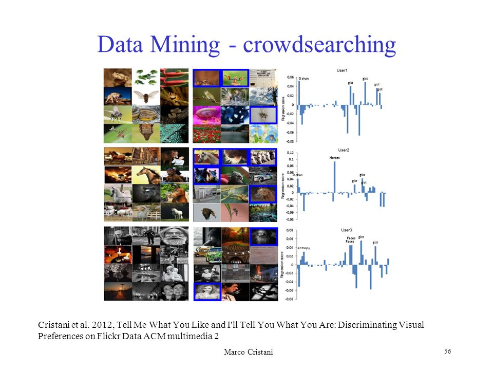 Data Mining - crowdsearching