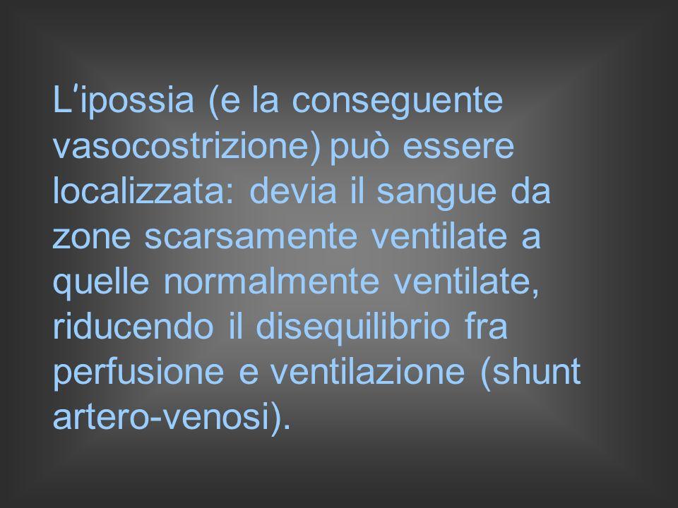 L'ipossia (e la conseguente vasocostrizione) può essere localizzata: devia il sangue da zone scarsamente ventilate a quelle normalmente ventilate, riducendo il disequilibrio fra perfusione e ventilazione (shunt artero-venosi).