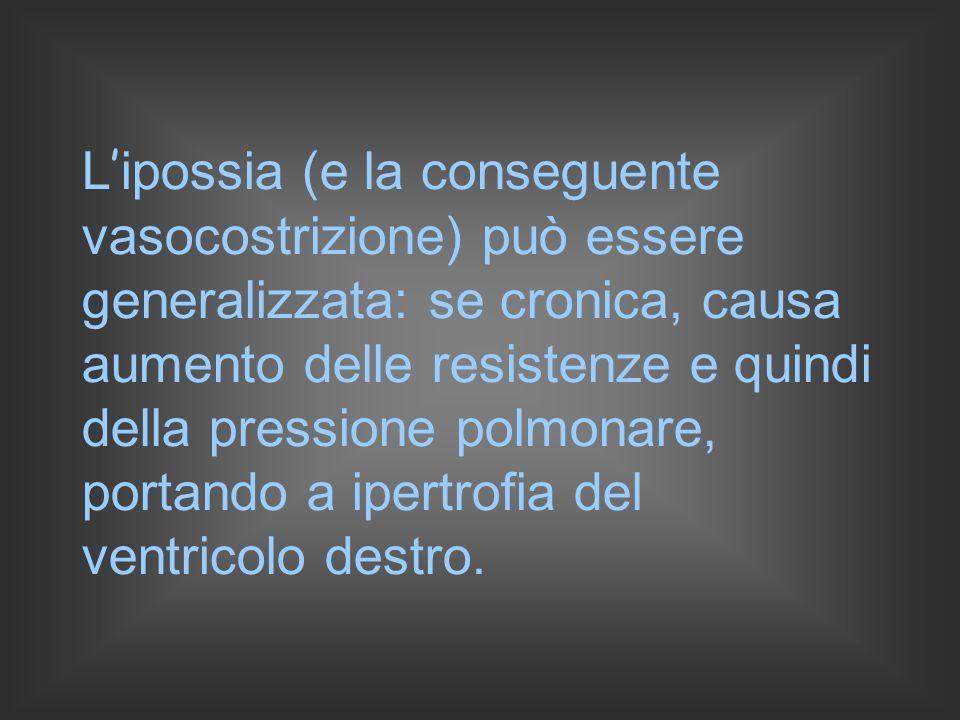 L'ipossia (e la conseguente vasocostrizione) può essere generalizzata: se cronica, causa aumento delle resistenze e quindi della pressione polmonare, portando a ipertrofia del ventricolo destro.