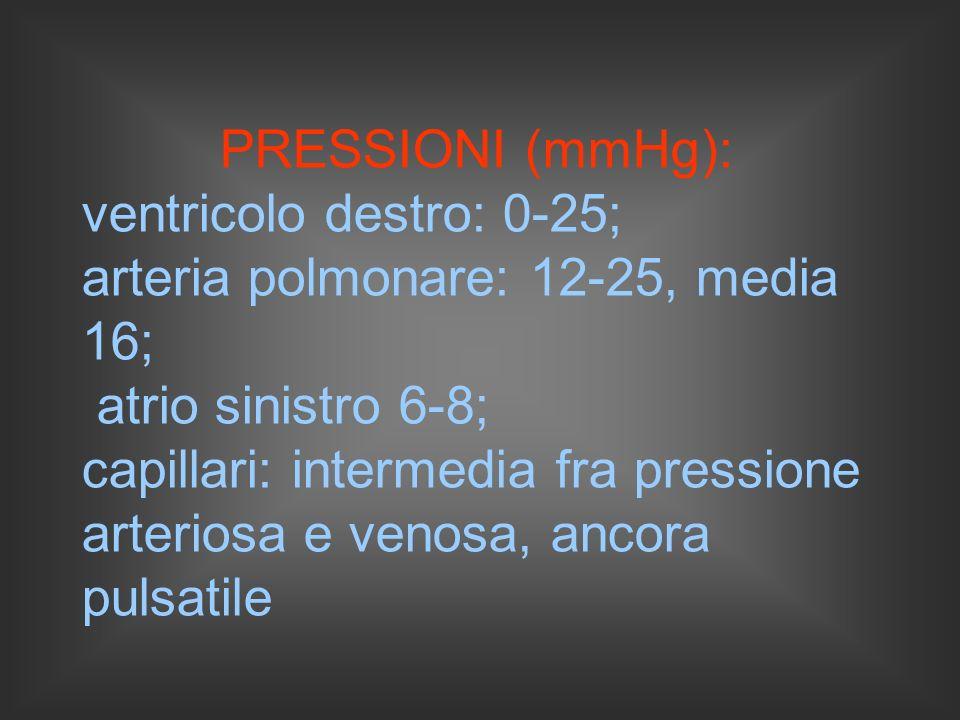 PRESSIONI (mmHg): ventricolo destro: 0-25; arteria polmonare: 12-25, media 16; atrio sinistro 6-8;