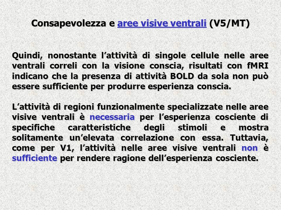 Consapevolezza e aree visive ventrali (V5/MT)