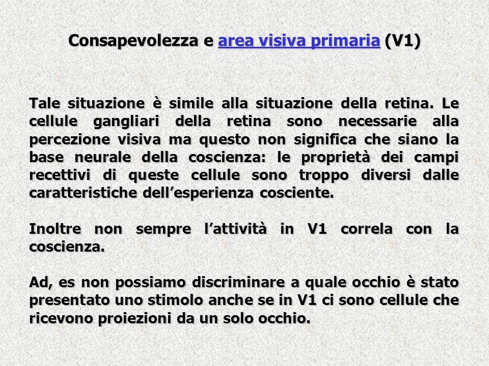Consapevolezza e area visiva primaria (V1)