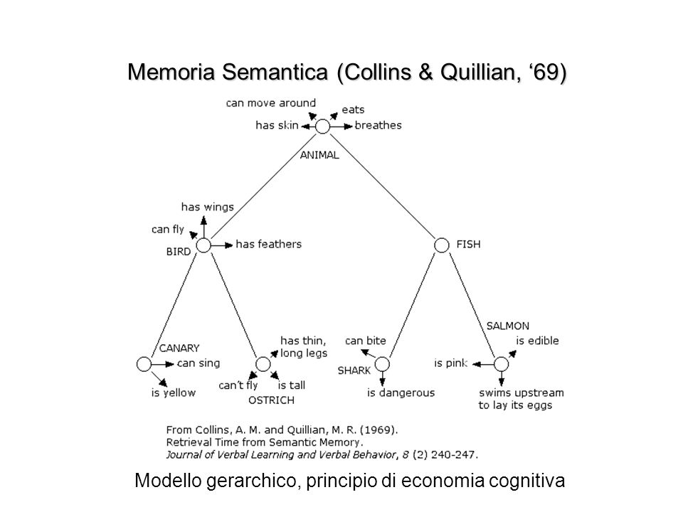 Memoria Semantica (Collins & Quillian, '69)