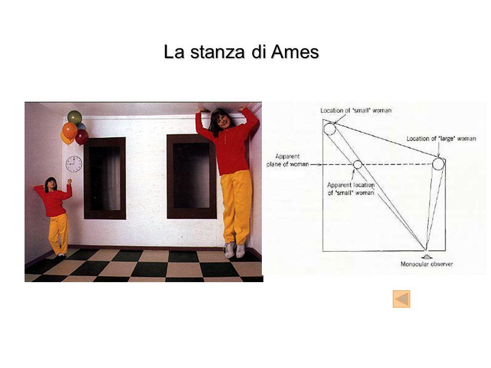La stanza di Ames
