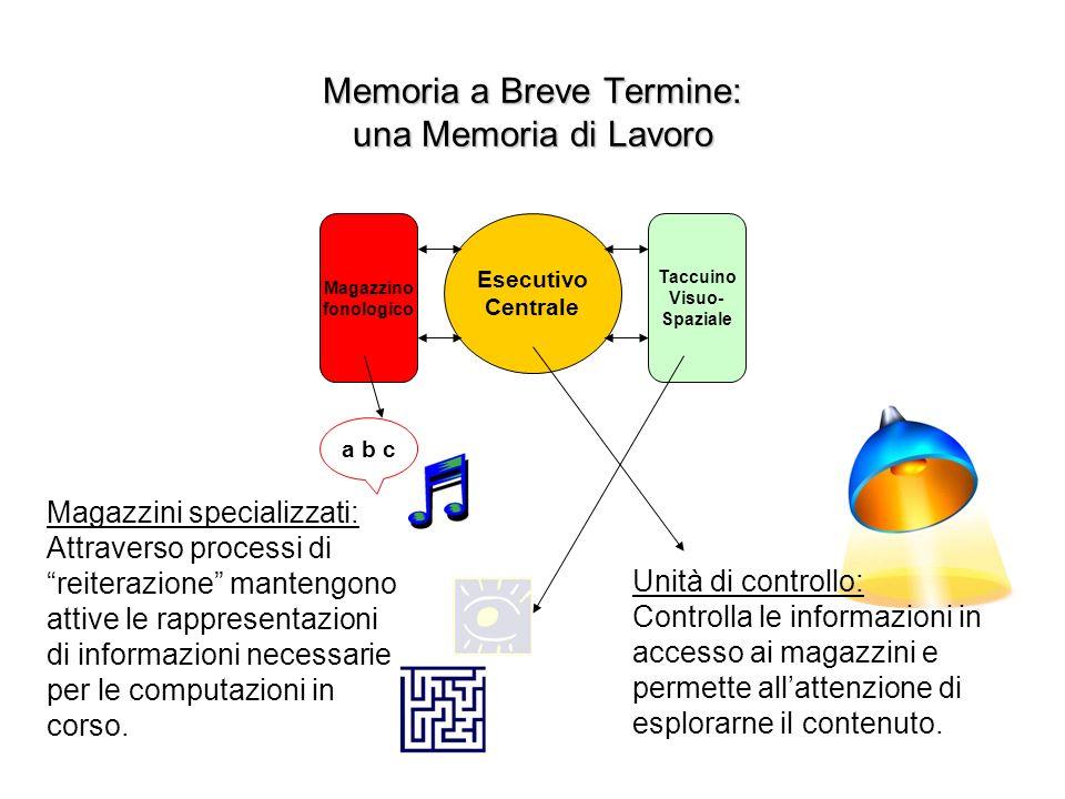 Memoria a Breve Termine: una Memoria di Lavoro