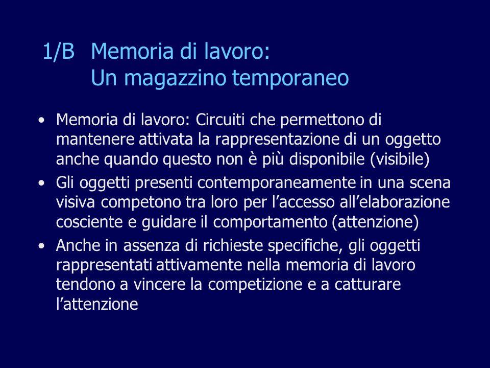 1/B Memoria di lavoro: Un magazzino temporaneo