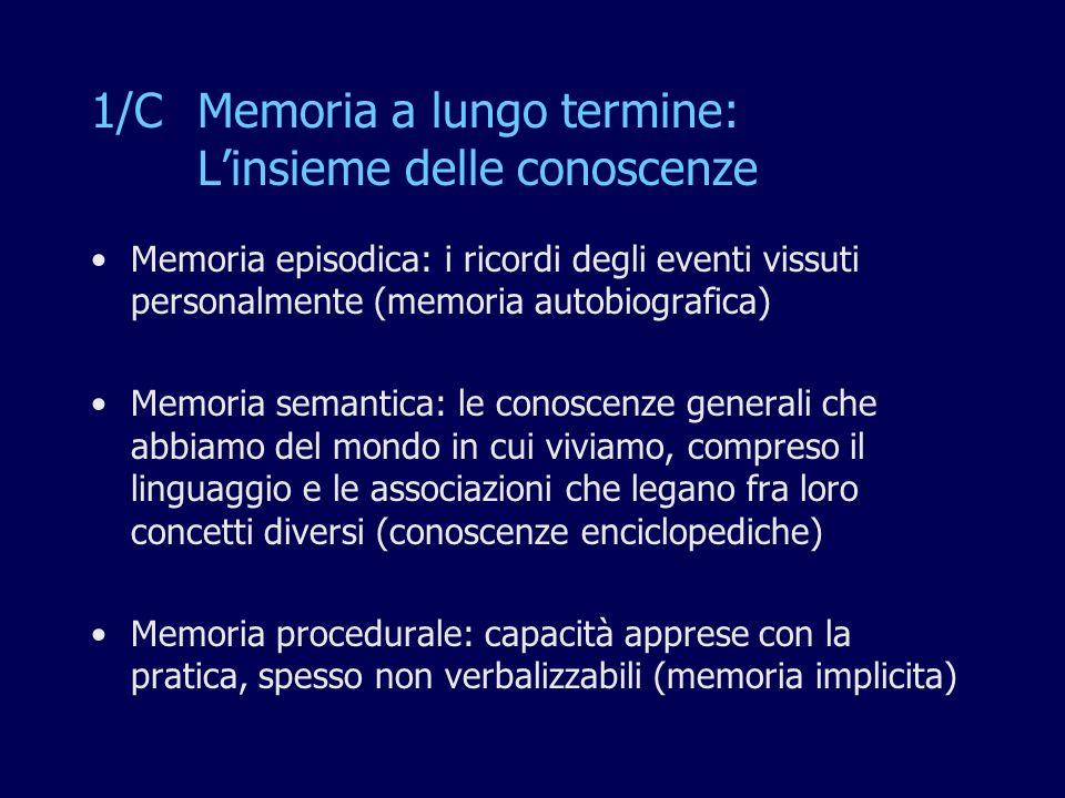 1/C Memoria a lungo termine: L'insieme delle conoscenze
