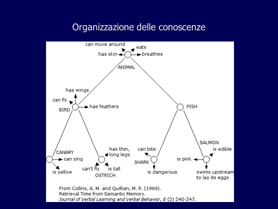 Organizzazione delle conoscenze
