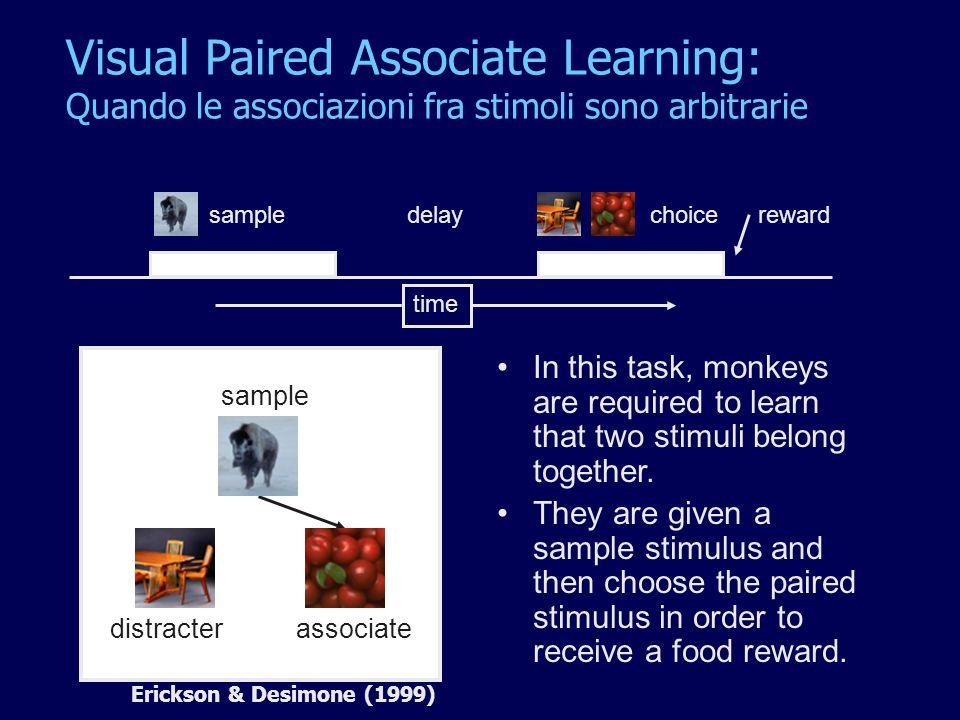Visual Paired Associate Learning: Quando le associazioni fra stimoli sono arbitrarie