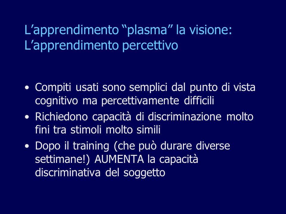 L'apprendimento plasma la visione: L'apprendimento percettivo