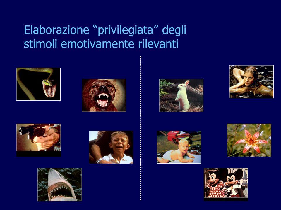 Elaborazione privilegiata degli stimoli emotivamente rilevanti