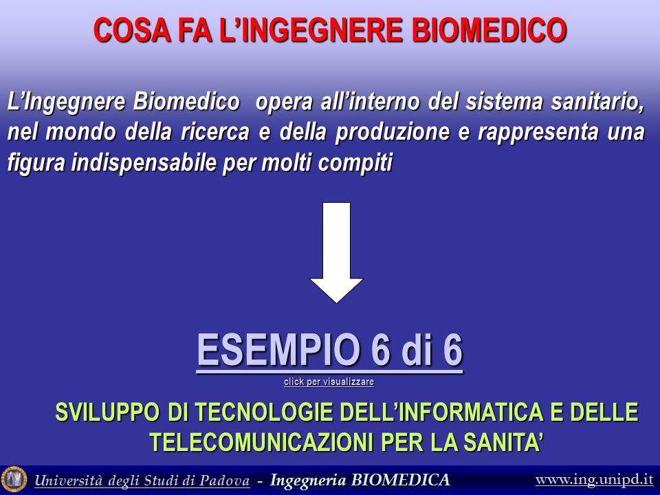 COSA FA L'INGEGNERE BIOMEDICO ESEMPIO 6 di 6 click per visualizzare