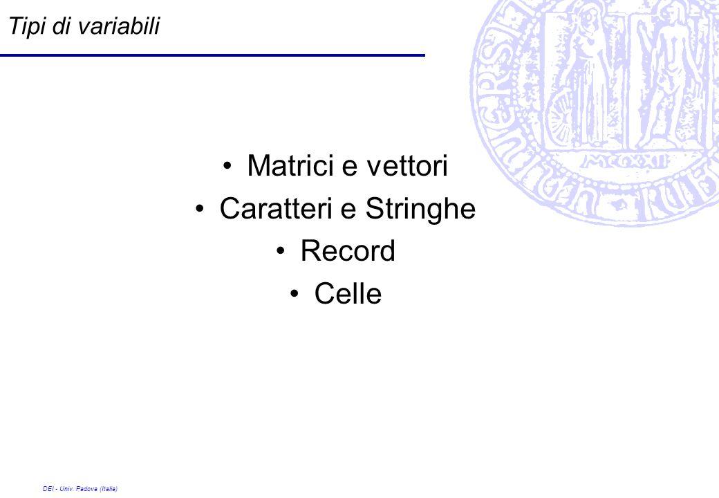 Matrici e vettori Caratteri e Stringhe Record Celle Tipi di variabili