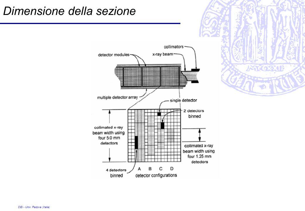 Dimensione della sezione