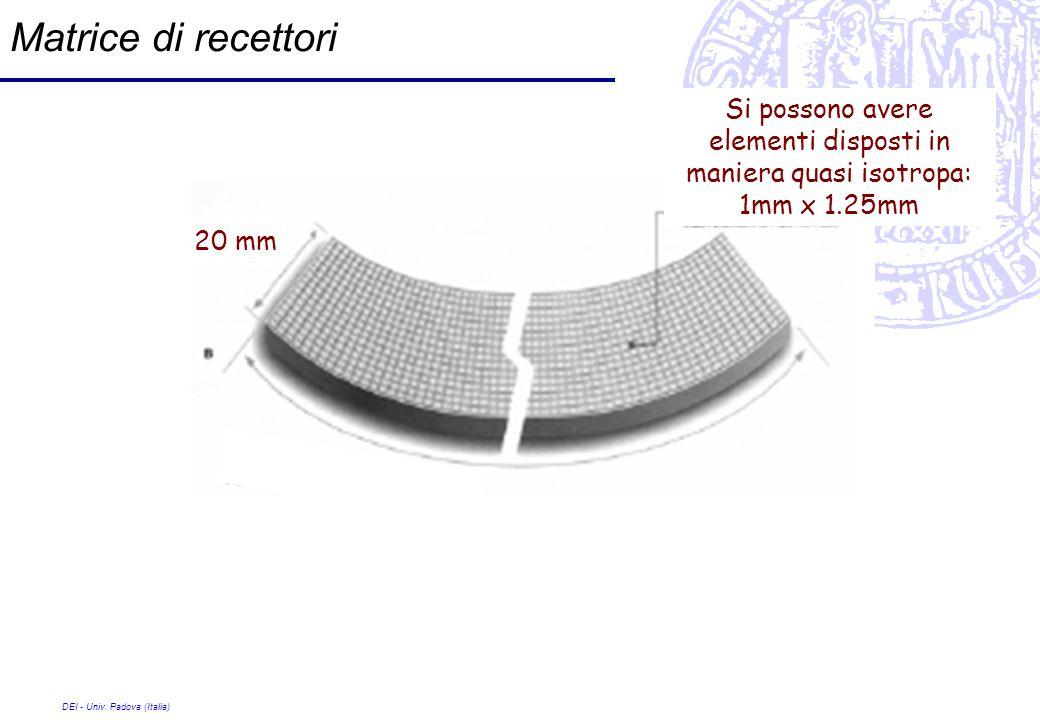 Matrice di recettori Si possono avere elementi disposti in maniera quasi isotropa: 1mm x 1.25mm. 20 mm.