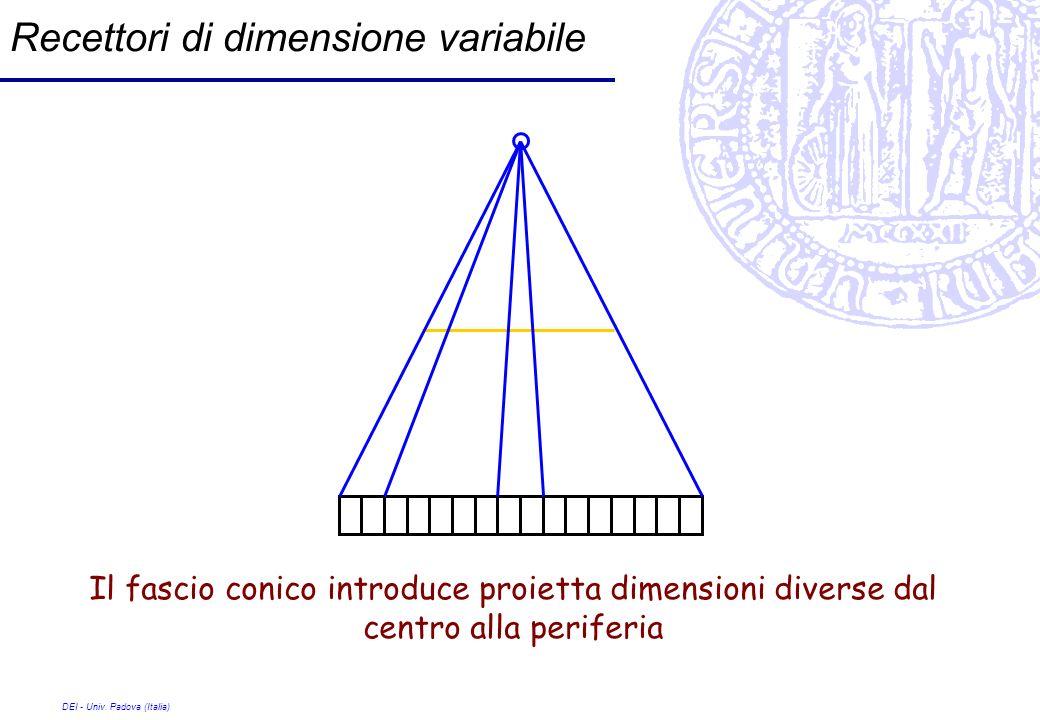 Recettori di dimensione variabile