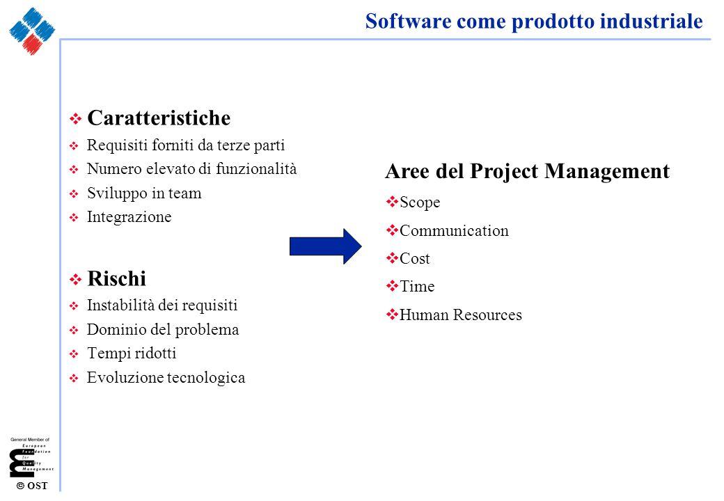 Software come prodotto industriale