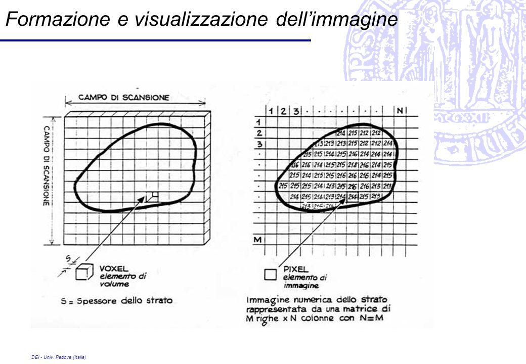 Formazione e visualizzazione dell'immagine