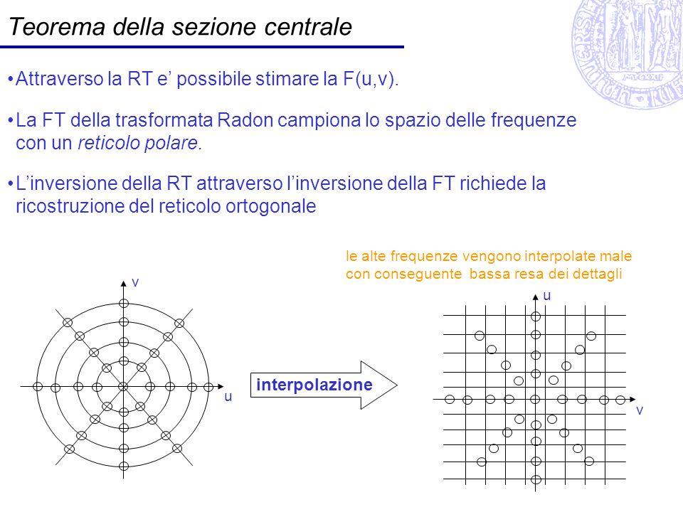 Teorema della sezione centrale
