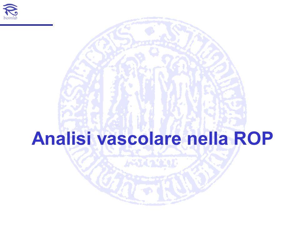 Analisi vascolare nella ROP