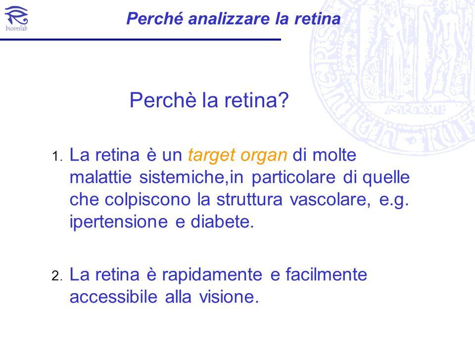 Perché analizzare la retina