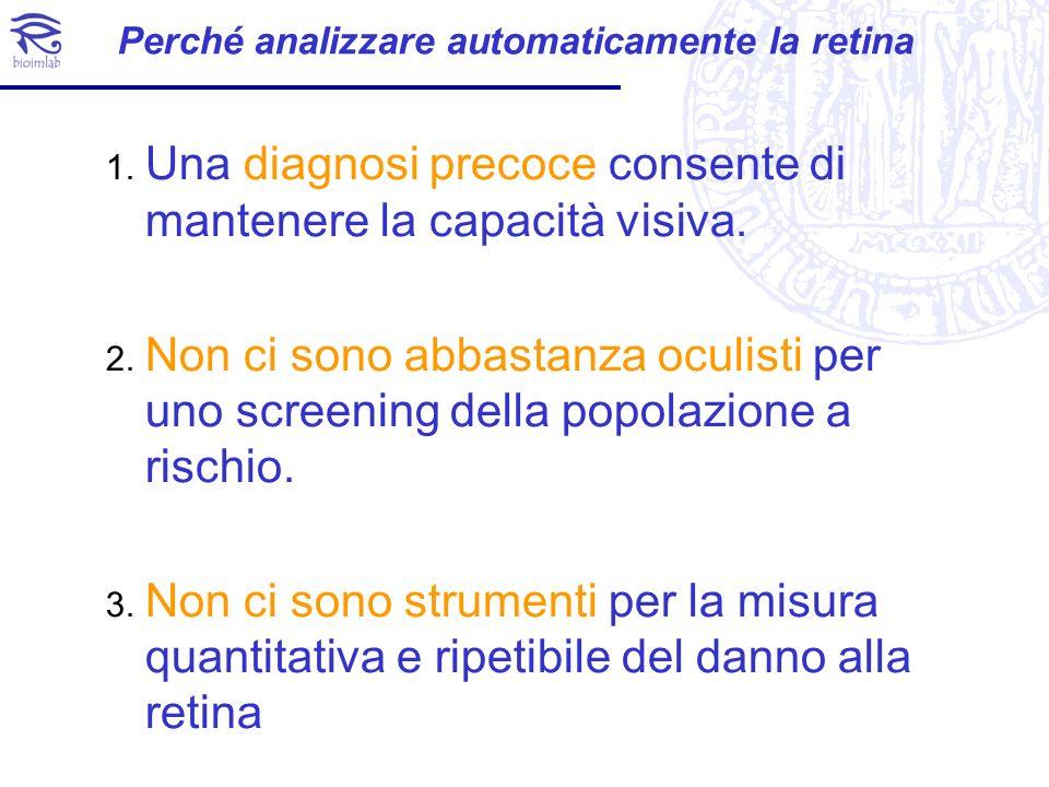 Perché analizzare automaticamente la retina