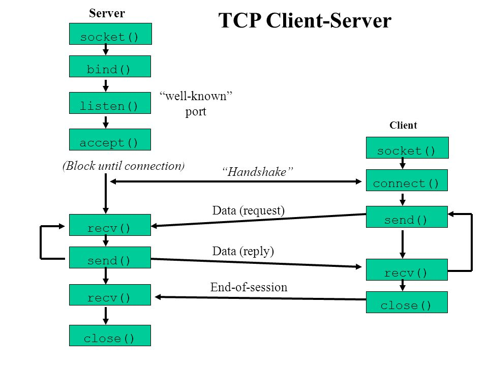 TCP Client-Server Server socket() bind() well-known port listen()