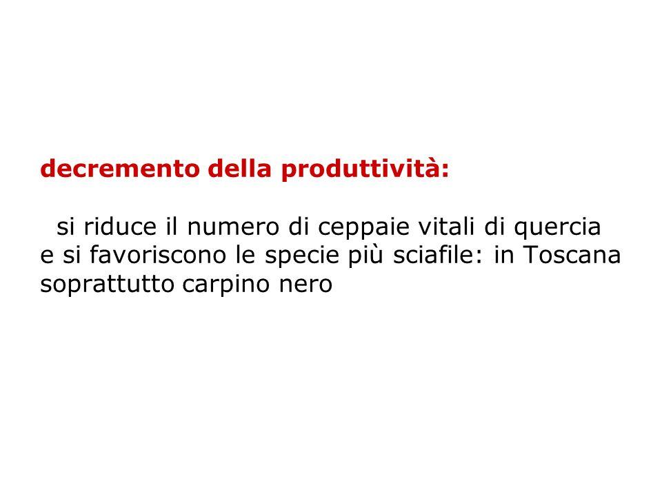 decremento della produttività: si riduce il numero di ceppaie vitali di quercia e si favoriscono le specie più sciafile: in Toscana soprattutto carpino nero