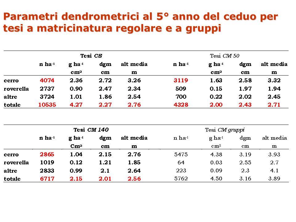 Parametri dendrometrici al 5° anno del ceduo per tesi a matricinatura regolare e a gruppi