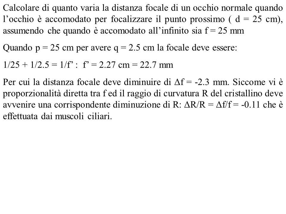 Calcolare di quanto varia la distanza focale di un occhio normale quando l'occhio è accomodato per focalizzare il punto prossimo ( d = 25 cm), assumendo che quando è accomodato all'infinito sia f = 25 mm