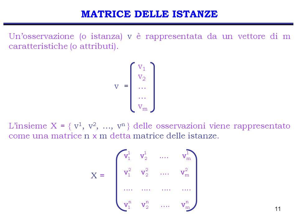 MATRICE DELLE ISTANZE Un'osservazione (o istanza) v è rappresentata da un vettore di m caratteristiche (o attributi).