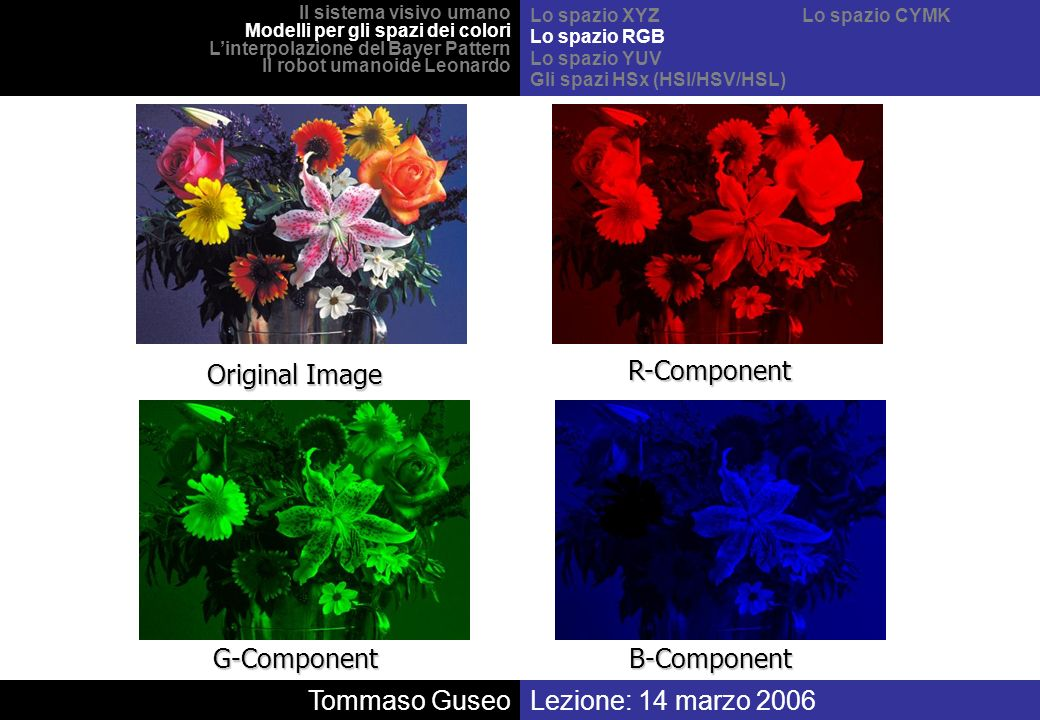 Original Image R-Component G-Component B-Component Tommaso Guseo