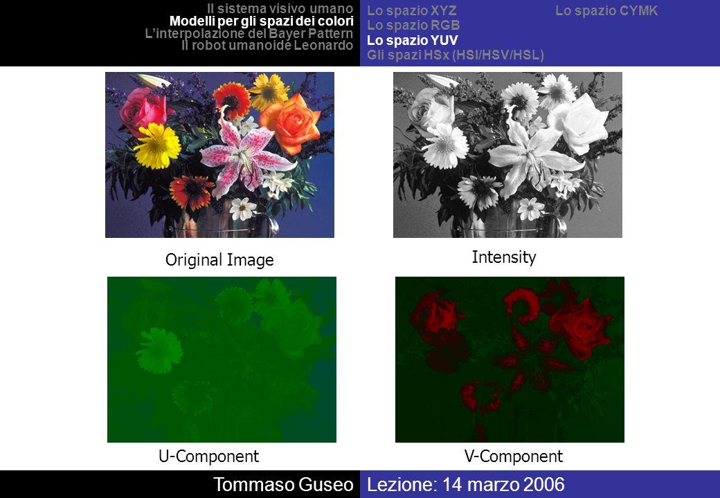 Tommaso Guseo Lezione: 14 marzo 2006 Original Image Intensity