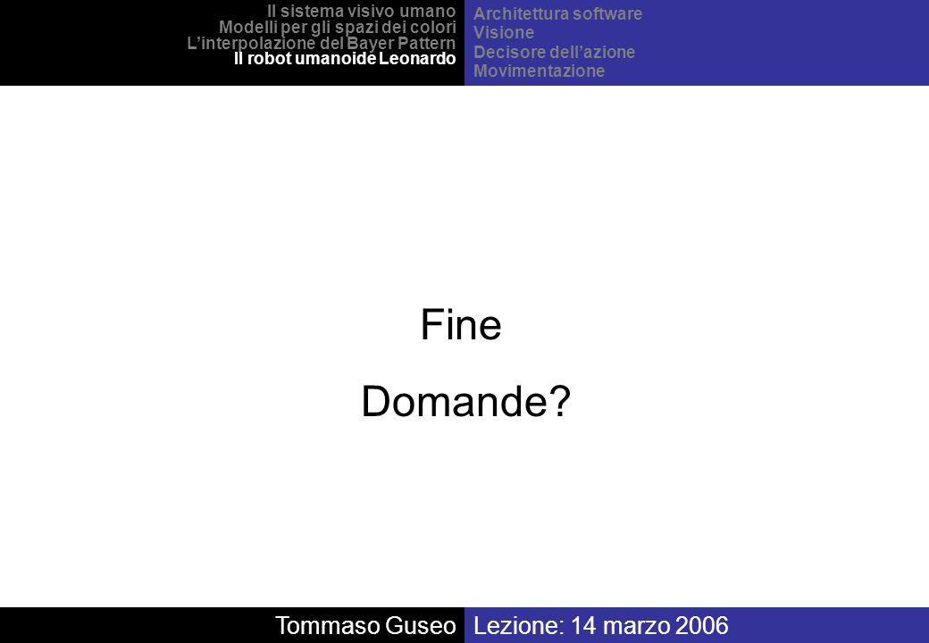 Fine Domande Tommaso Guseo Lezione: 14 marzo 2006