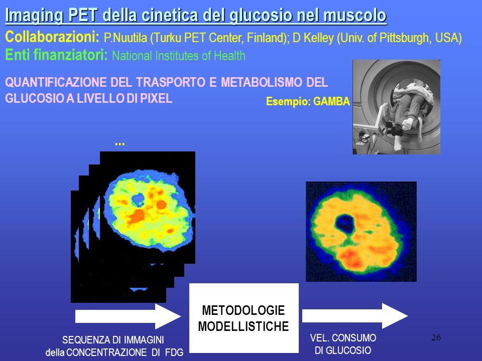 METODOLOGIE MODELLISTICHE