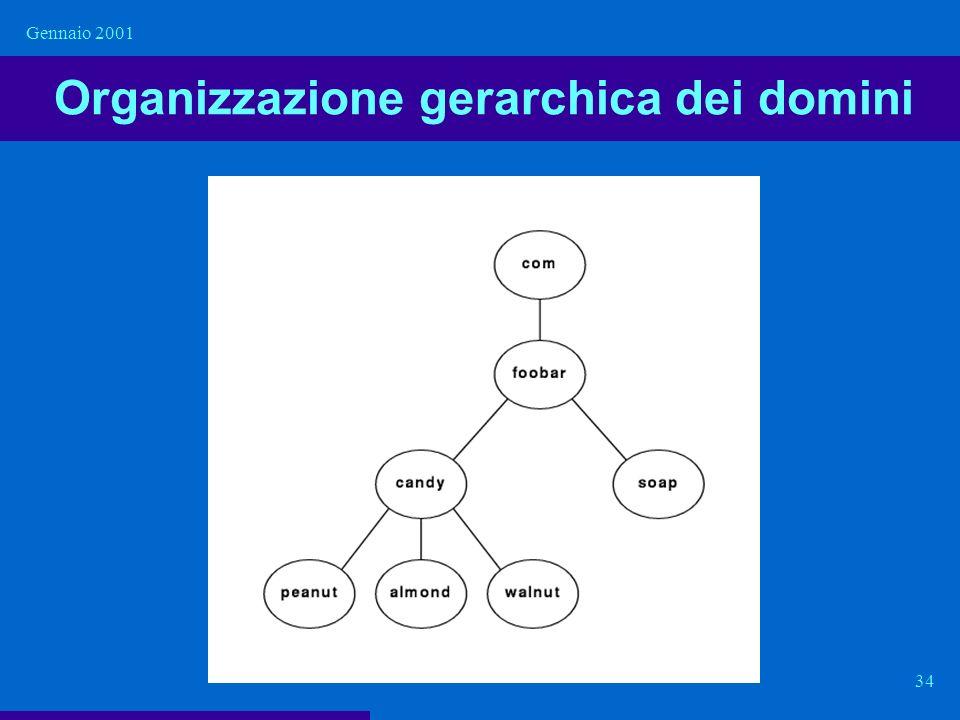 Organizzazione gerarchica dei domini