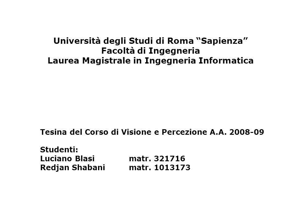 Università degli Studi di Roma Sapienza Facoltà di Ingegneria Laurea Magistrale in Ingegneria Informatica
